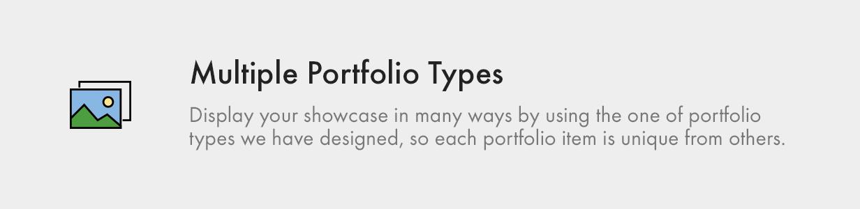 Multiple Portfolio Types
