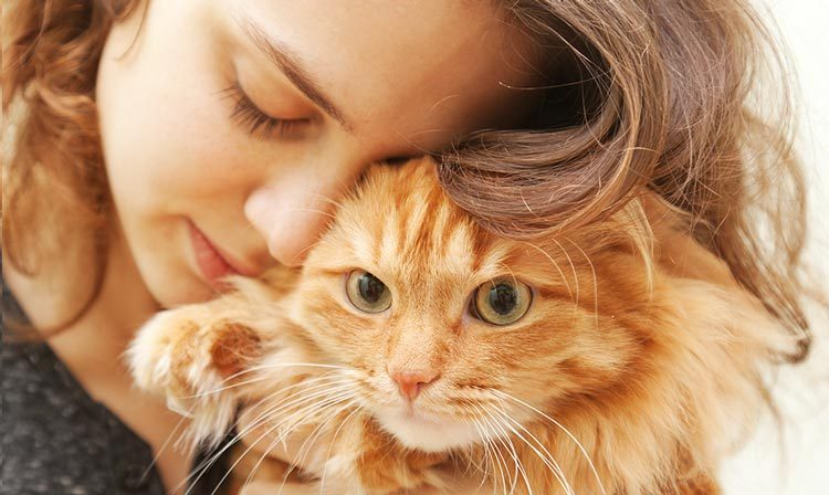 Why Animal-Assisted Treatment is necessary and also Exactly How to Take advantage of It