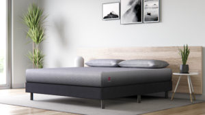 Ideal Twin XL Dimension Bed mattress: Purchaser's Overview