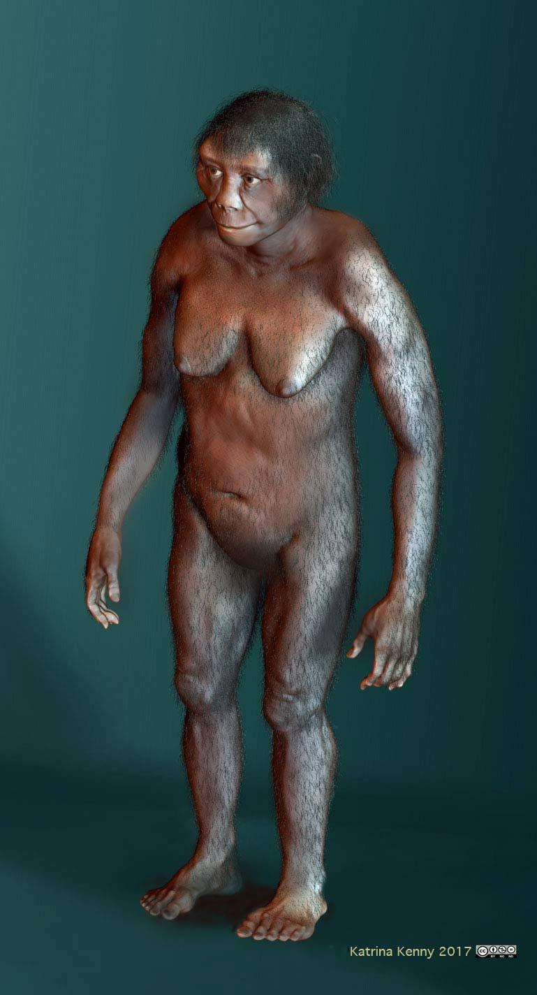 The bones of a species nick-named