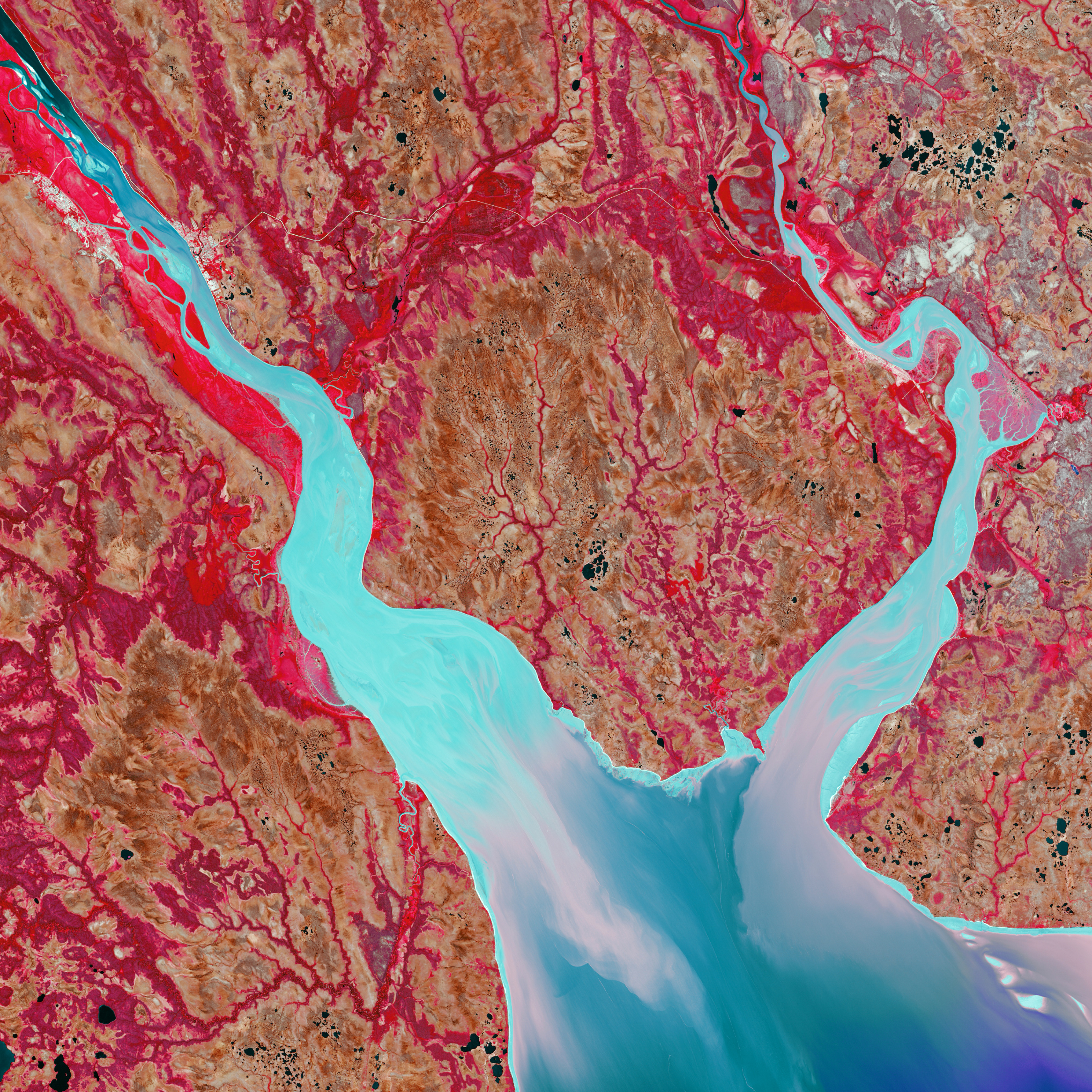 In northern Russia, the freshwater of the Mezen River meets the saltwater of the Arctic Ocean. The funnel-shaped estuary has a strong tidal current that mixes sediment in the water rather than building up a delta. In this colourful composition, the increasing brightness marks an increase in water turbidity.
