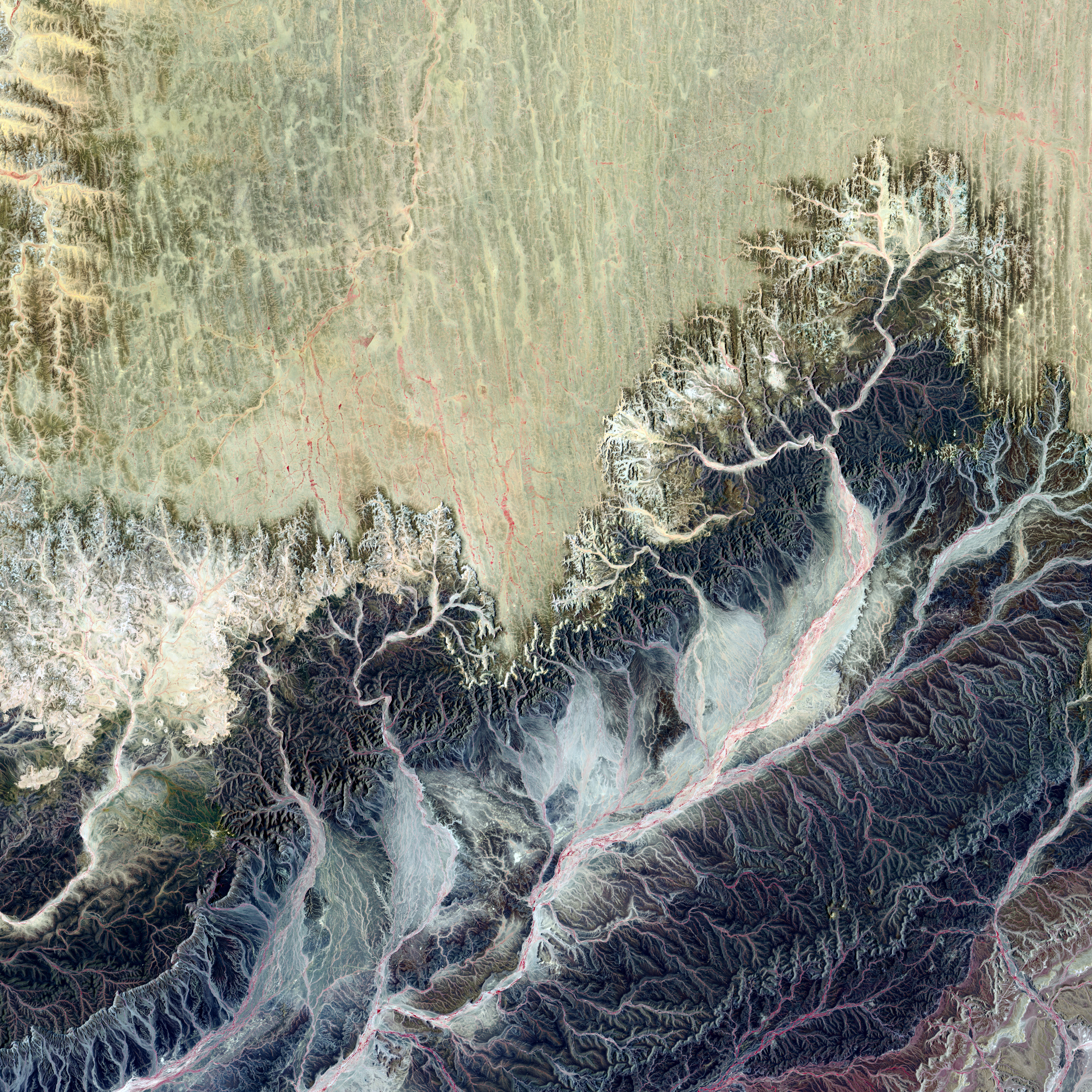 This natural landscape might appear more like a medical illustration of itchy nerve endings. In Western Sahara, Africa, an intense network of wadis drains toward the west, eventually reaching the Atlantic Ocean. These drainage courses are almost always dry in this remote part of the Sahara Desert.