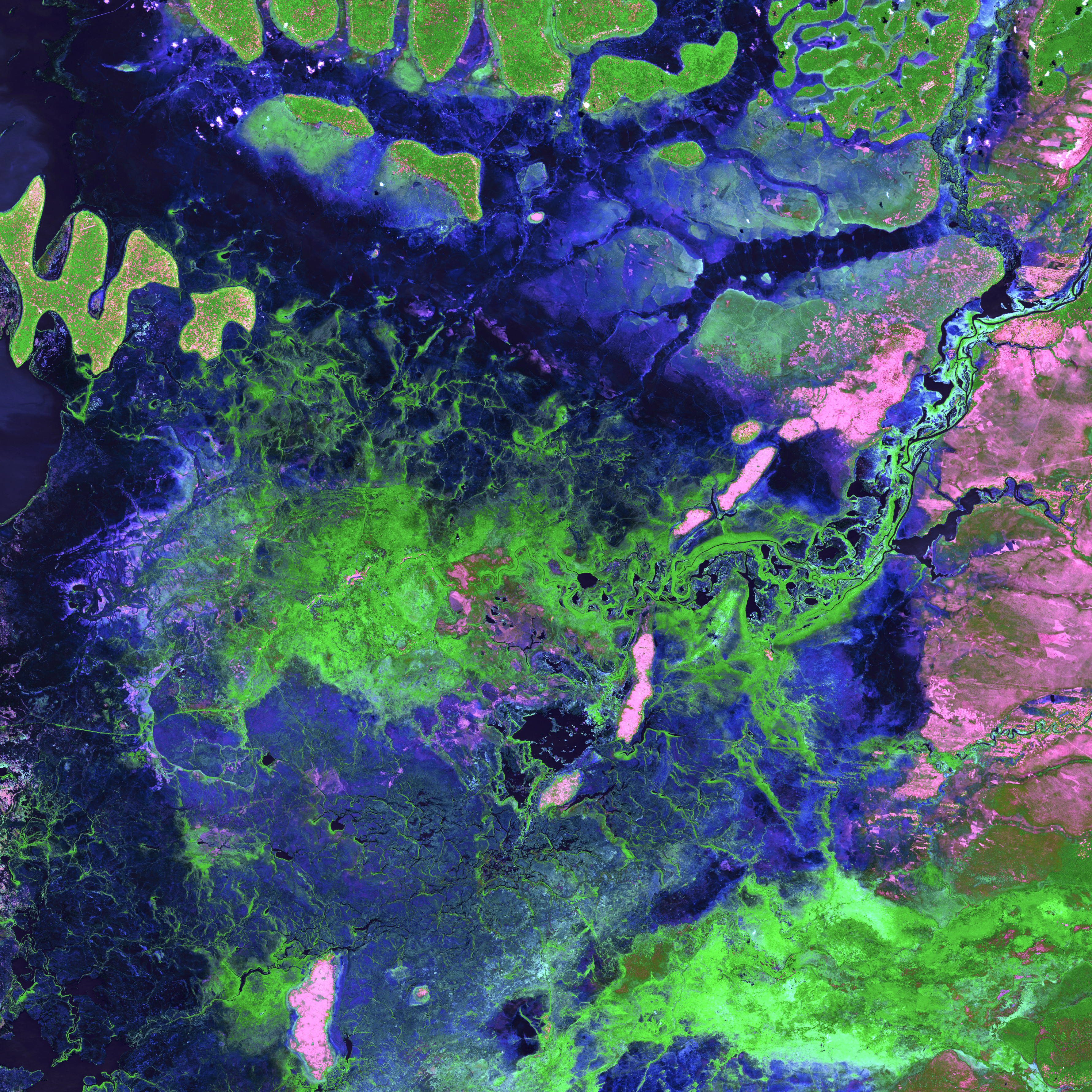 Seventeen rivers flow into the Bangweulu Wetlands in Zambia, but only one drains out. Green tendrils randomly sweep through the image, a landscape dominated by various grasslands, open water, and dense Papyrus grass and Phragmites reeds. The entire wetland covers an area about the size of Connecticut.