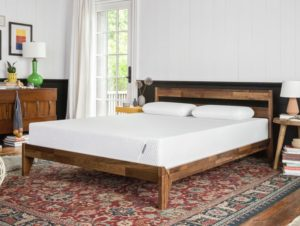 Finest Bed Mattress for Visitor Space: Customer ' s Overview