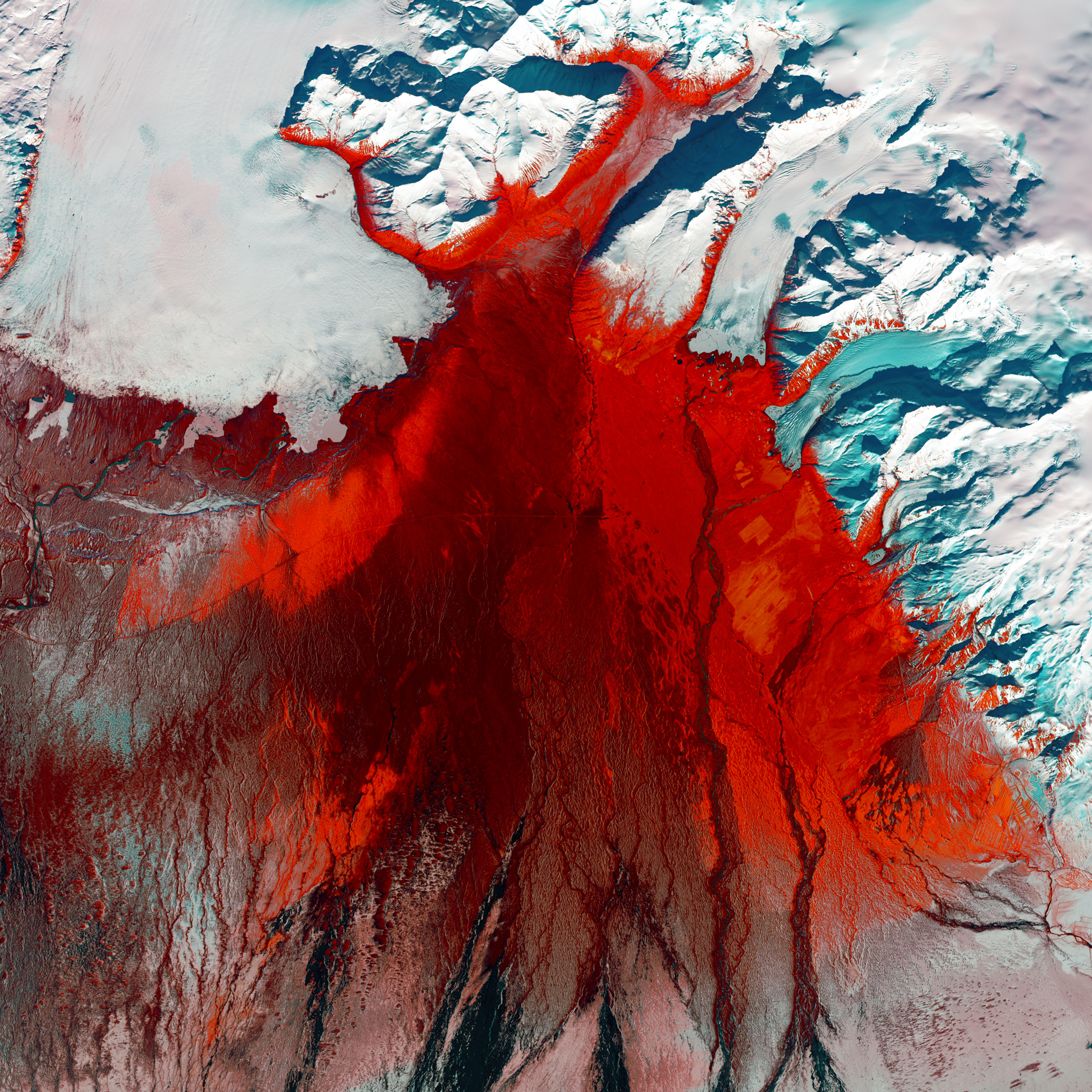 Red and black seem to mar the icy glacial landscape of southern Iceland. The grey-black filaments are past glacial melting outbursts called jökulhlaups. These abrupt flooding events gush down this outwash plain called Skeiðarársandur, one of the world's largest. The Skeiðarárjökull Glacier reaches down from the top left of the image. The plain is mostly devoid of vegetation, but red colouring indicates low moss, birch shrub, and other grass species.