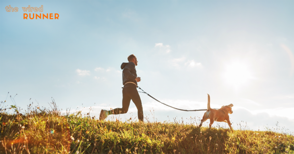 man running on sunny trail in field with dog