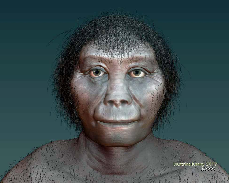 Ancients hobbits who once lived in Indonesian (artist's impression) most likely evolved from an ancestor in Africa