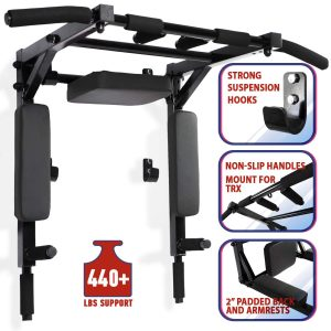 Wall Mounted Pull Up Bar and Dip Station