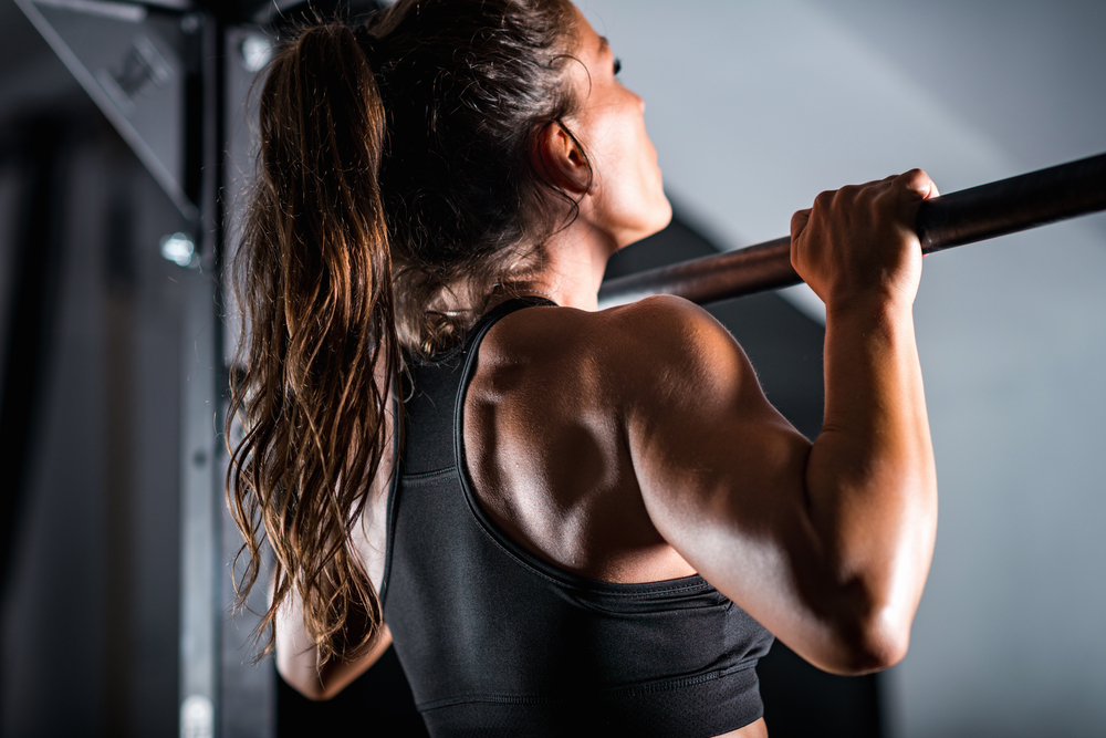 Wall Mounted Pull Up Bars Buying Guide