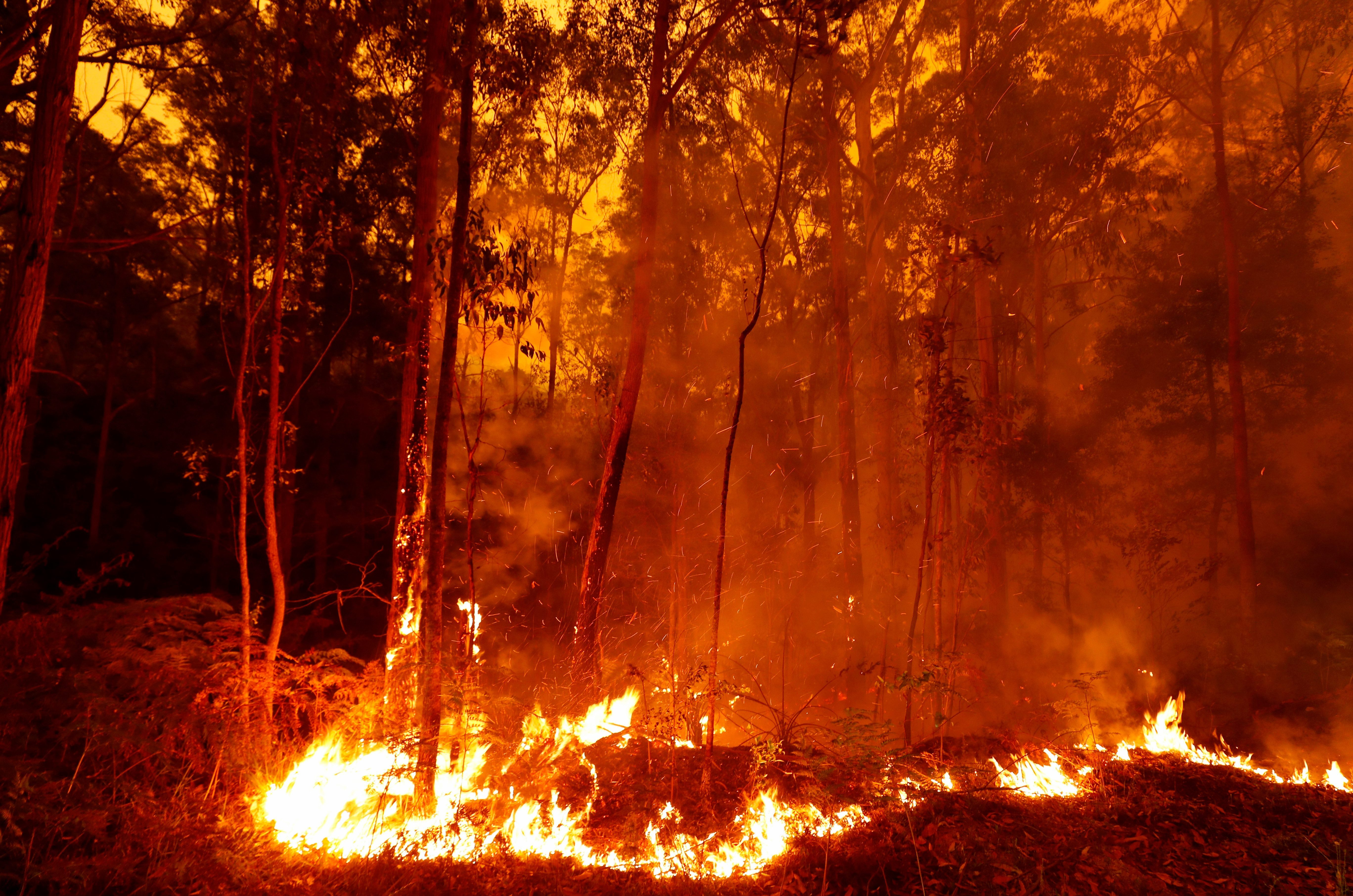Raging fires continued to burn today in East Gippsland, Victoria