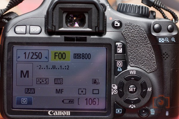 F00 display in canon DSLR in reverse lens configuration