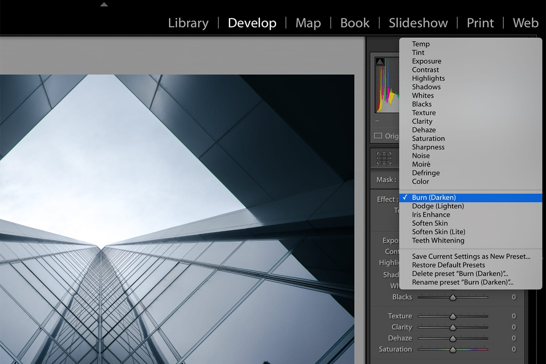 Screenshot of Lightroom Develop Module.