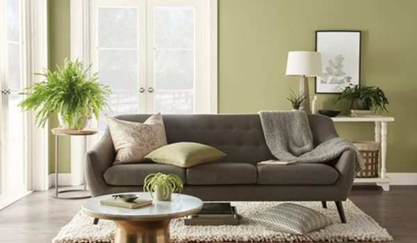Behr 2020 Color of the Year Back to Nature S340-4