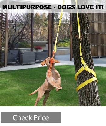 XiaZ Retractable Interactive Dog Toy