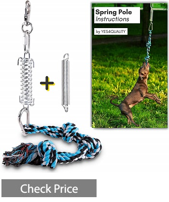 Durable Spring Pole for Pitbull