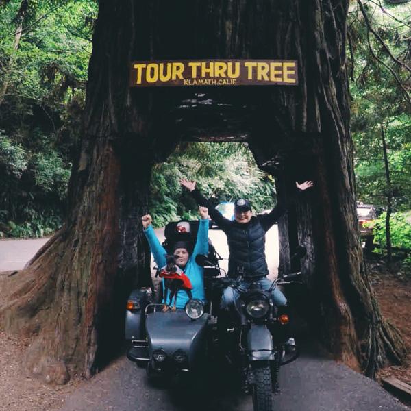 tour thru tree klamath california
