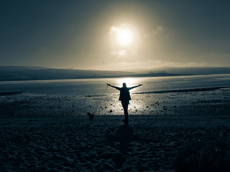 tomales bay resort sunset