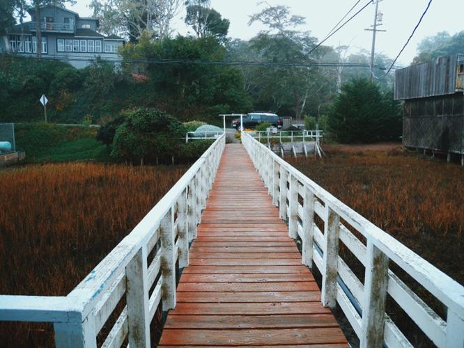 Sea Star Cottage dock  - Point Reyes