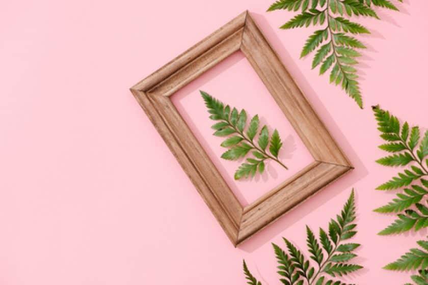 Minimalist botanical interior design background