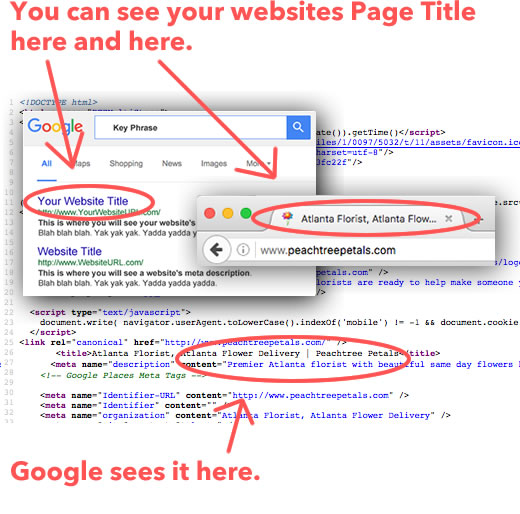 page-title-you-vs-google