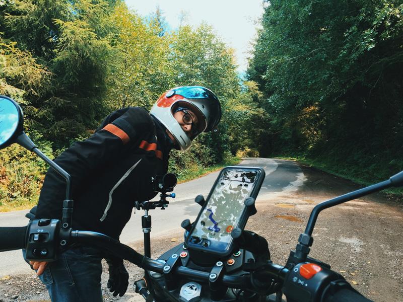 redwood national park summer road trip