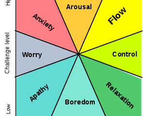 EXPERIENCE FLUCTUATION DIAGRAM
