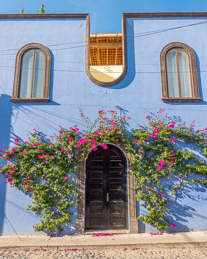 Blue house with pink flowers in San Miguel de Allende