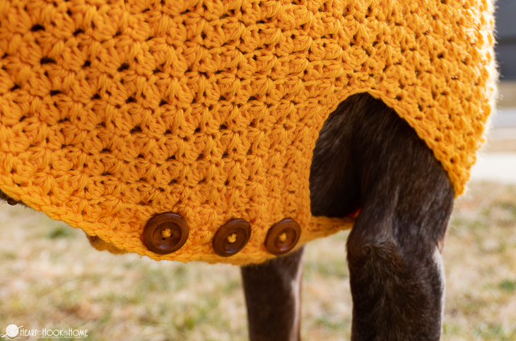 How to make a stylish crocheted sweater for big dogs