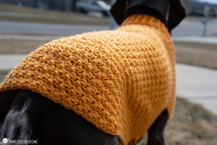 Crochet sweater for large dogs
