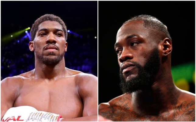 Anthony Yeshua awaits the third battle between Deontey Wilder and the wrath of Tyson.