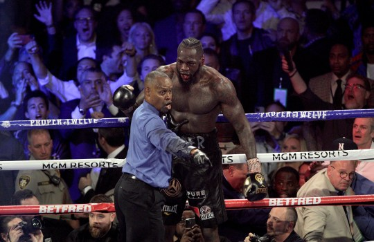 Deontey Wilder was stopped in seven laps by Tyson Fury.