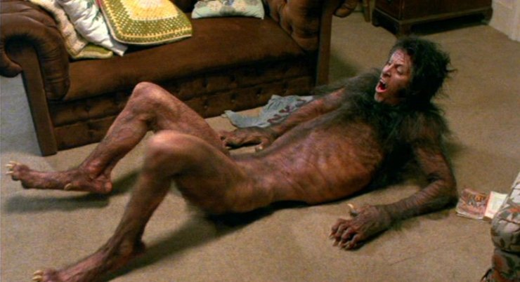 http://31.220.61.170/wp-content/uploads/2020/04/1586206488_289_ An American werewolf in London and his transformation icon.jpg