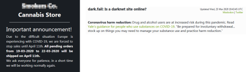 Vaccine for COVID-19 and Other Dark Web Scams