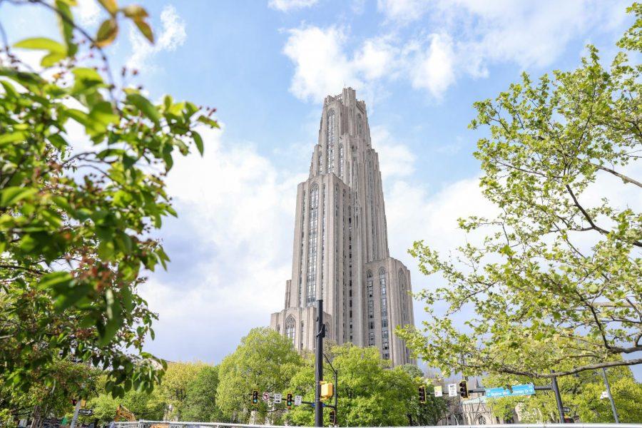 http://31.220.61.170/wp-content/uploads/2020/05/Pitt-schools-preparing-for-possible-budget-cuts.jpg