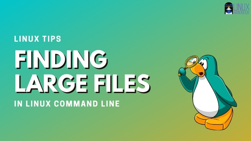 How to Find the 10 biggest files on Linux Command Line