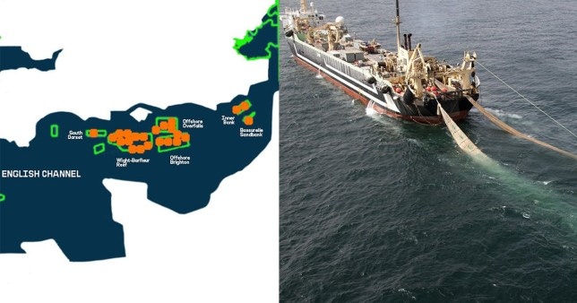 Trawlers should be suspended by the member, according to Greenpeace.