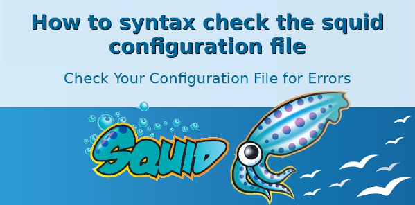 Squid Configuration File for Syntax Errors