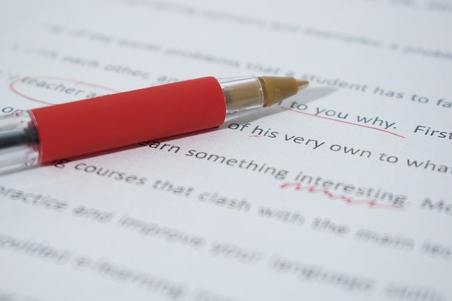 Why do professional essay writers need to be hired? -The NoobsLab