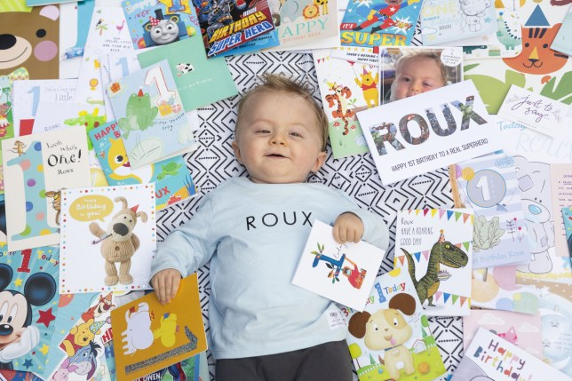 Baby Roux Owen with all his cards