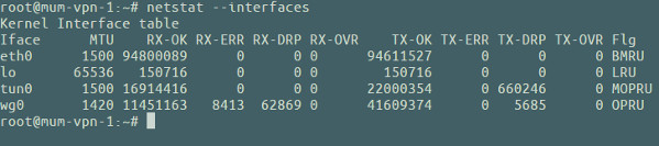 How to show dropped packets per interface on Linux