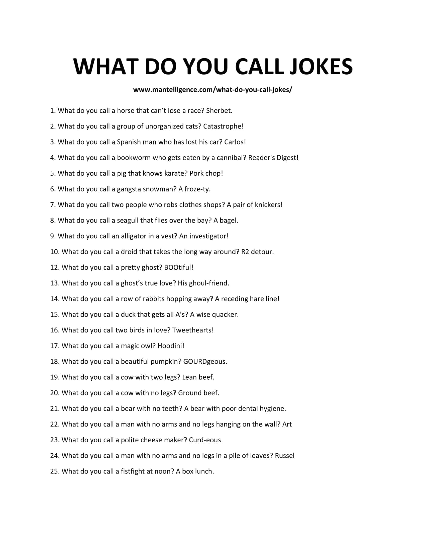 52 What Do You Call Jokes