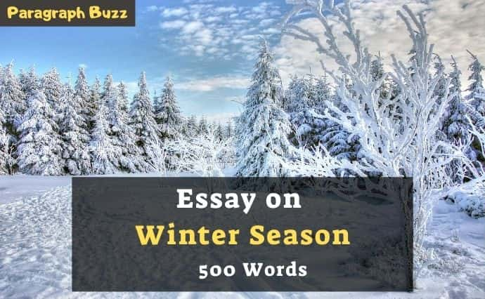 500-word essay about the winter season