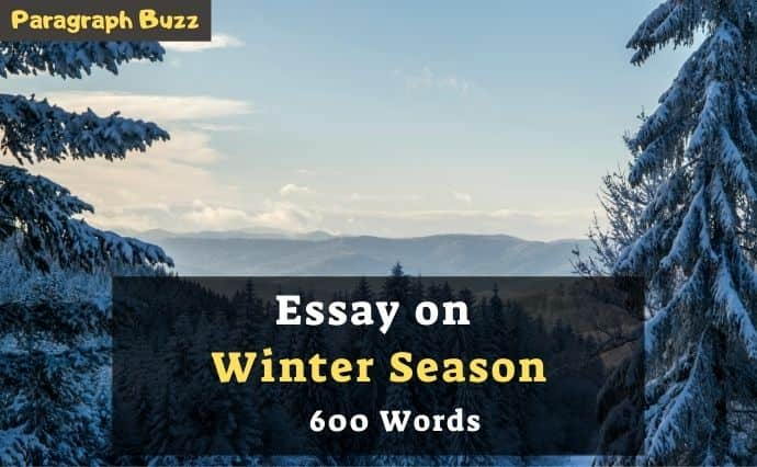 600-word essay about the winter season