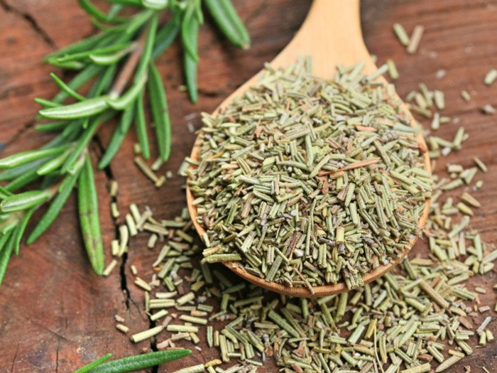 How To Cut, Dry, & Store Rosemary