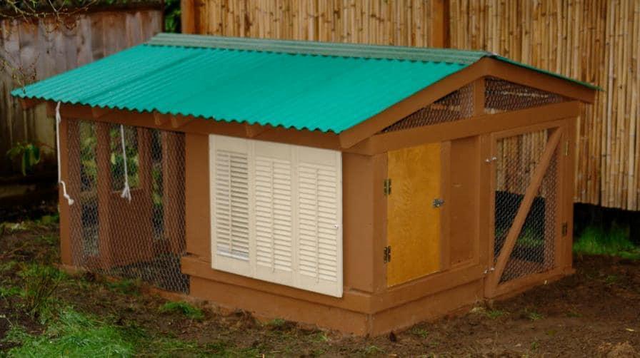 Backyard henhouse