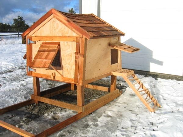 Chicken coop21