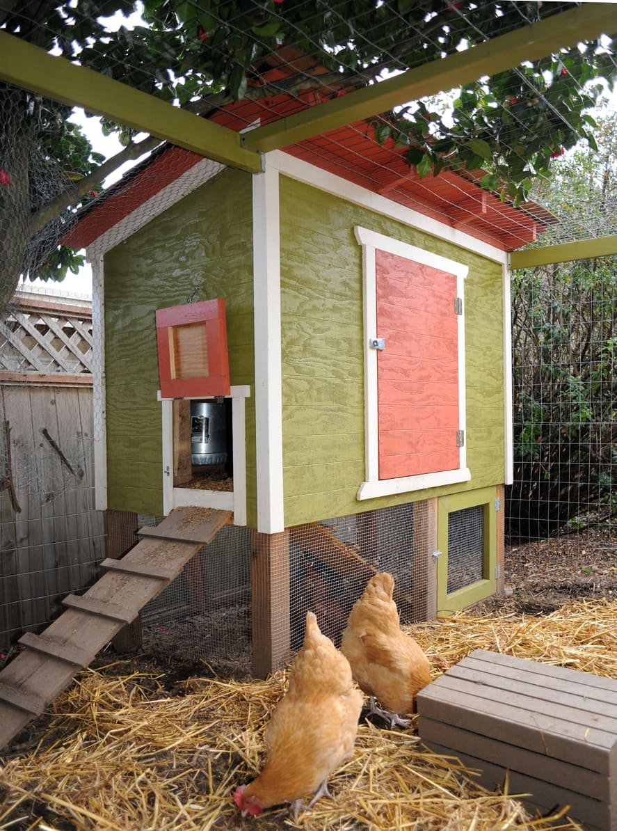 Chicken ham11-small