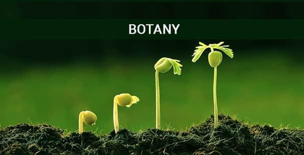Course botany India