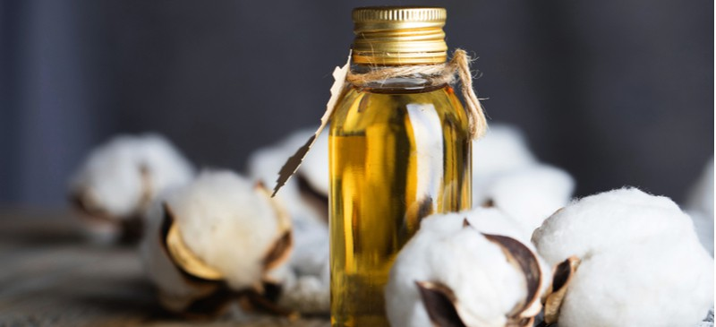 Is Cottonseed Oil Good or Bad for You? Uses, Dangers, Benefits